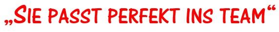 perfekt_ins_team